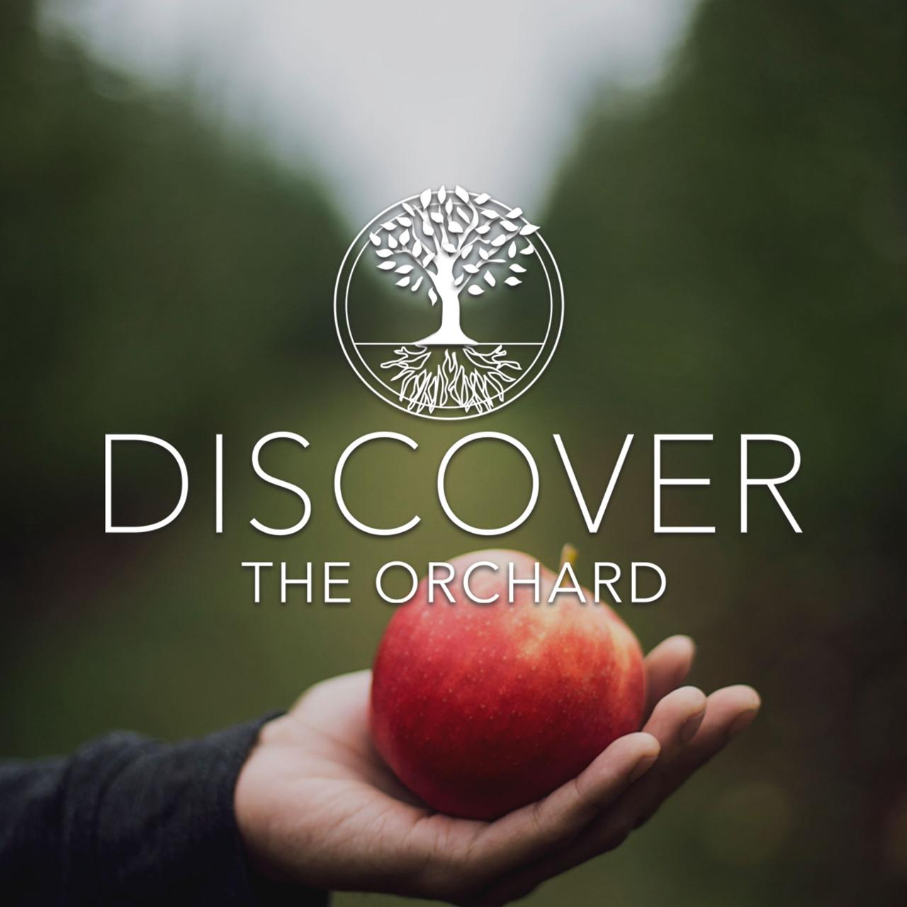 Discover The Orchard Class Logo
